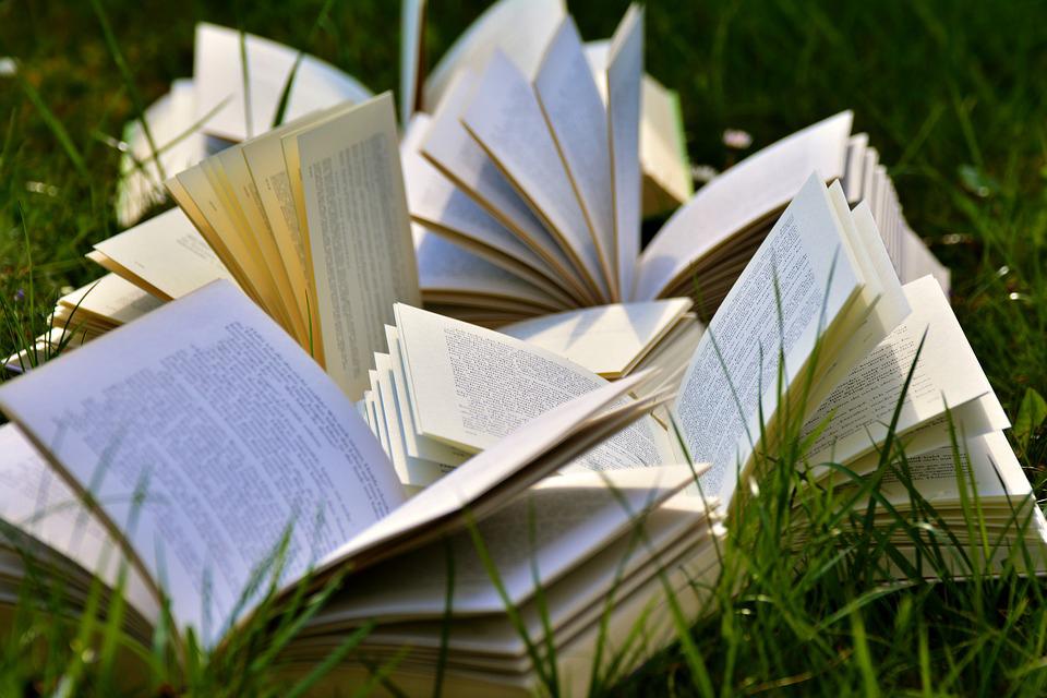 Bild zeigt Bücher auf einer Wiese. Bildkommentar: Keep calm and read Books.