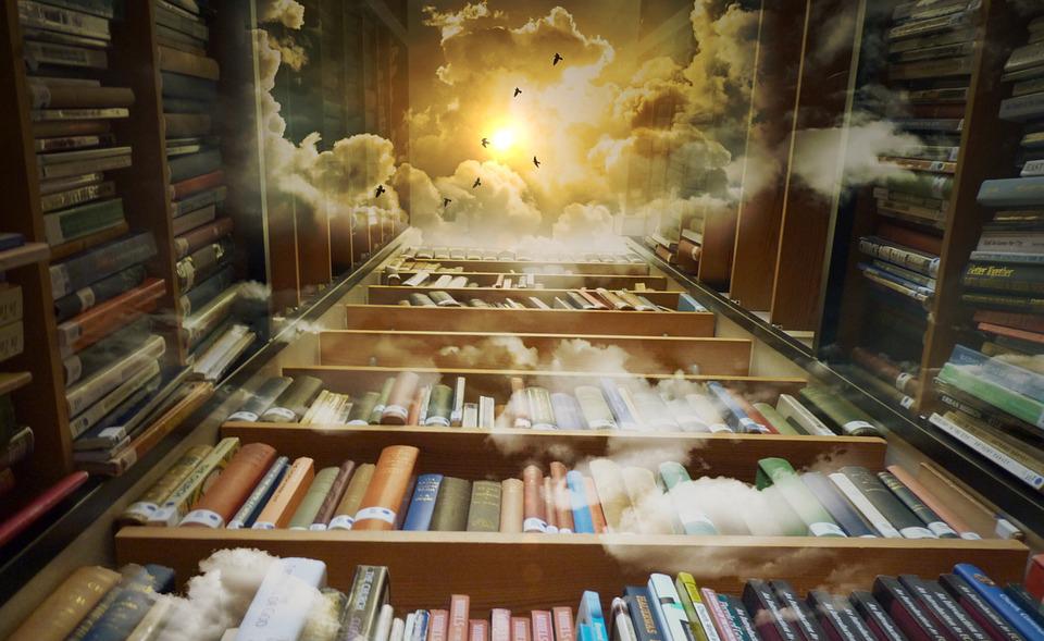 Das Bild zeigt ein bis zum Himmel reichendes Bücherrregal. Bildunterschrift: Bücher sind eine Treppe zum Himmel.