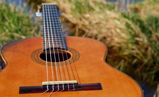 akustische Gitarre aus hellem Holz liegt im Gras