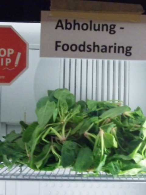 Spinat im Fairteiler-Kühlschrank
