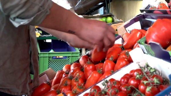 Leckere Tomaten in der Auslage vor Onkel Rashids Laden